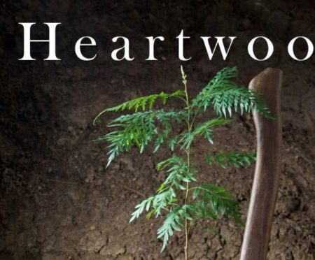 Front cover of Heartwood: The art and science of growing trees for conservation and profit by Rowan Reid. Photograph showing seedling of Australian Silky Oak on a Sydney Blue Gum log.